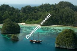 Expedition site Coming Soon....