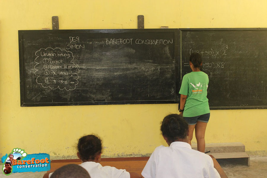 Barefoot Conservation teaching maths
